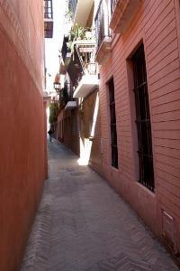 Se alquila Piso Centro de Sevilla