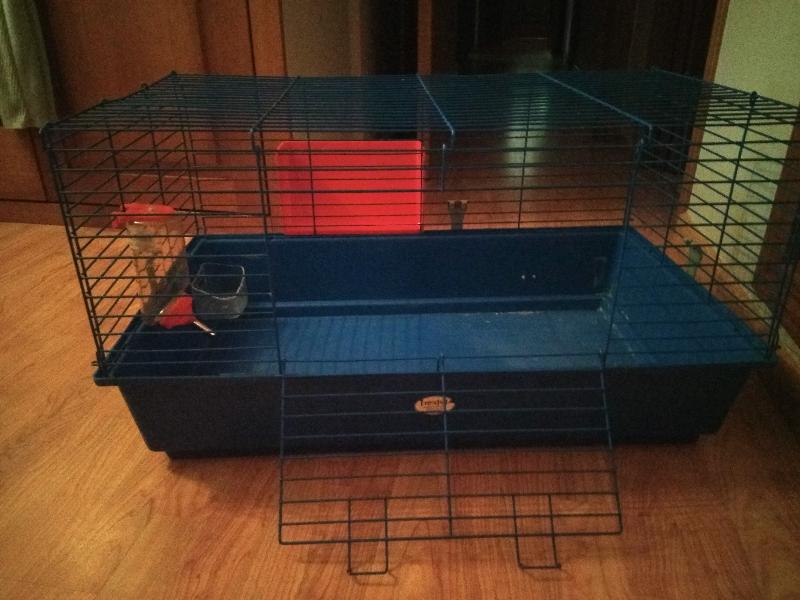 Vendo jaula azul desmontable junto con un bebedero,
