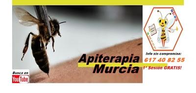 ¿Conoces la Apiterapia?