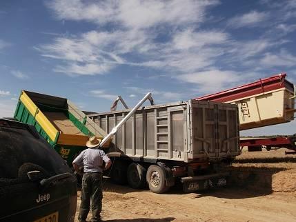 SINFIN PLEGABLE HIDRAULICO para remolque agricola  - Foto 12