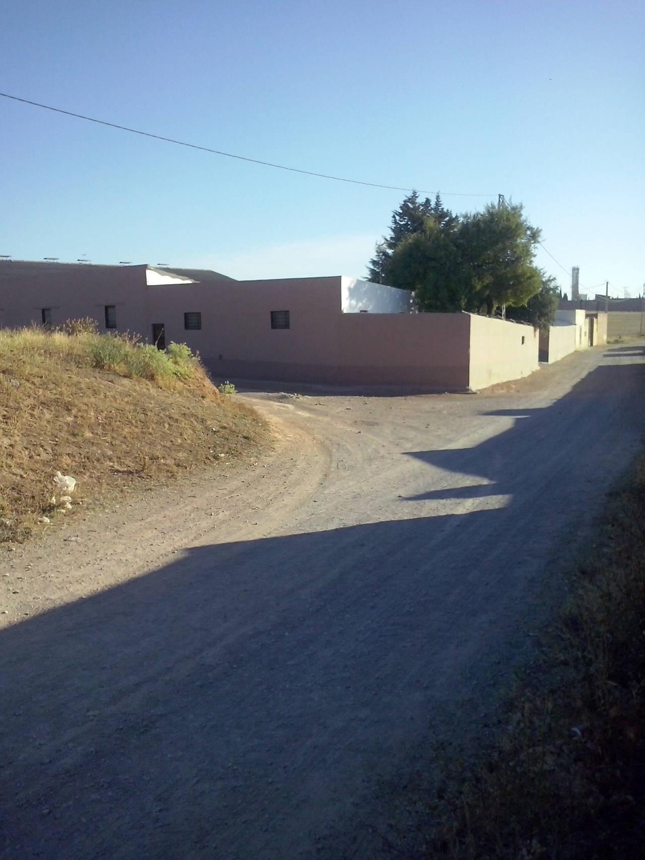 VENTA - FINCA CON CHALET - CAMPILLOS - MALAGA - ANDALUCIA  - Foto 4