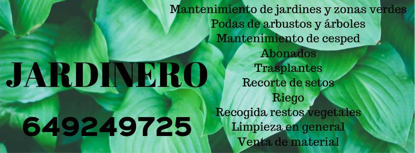 JARDINERO ECONOMICO Y PROFESIONAL  - Foto 2