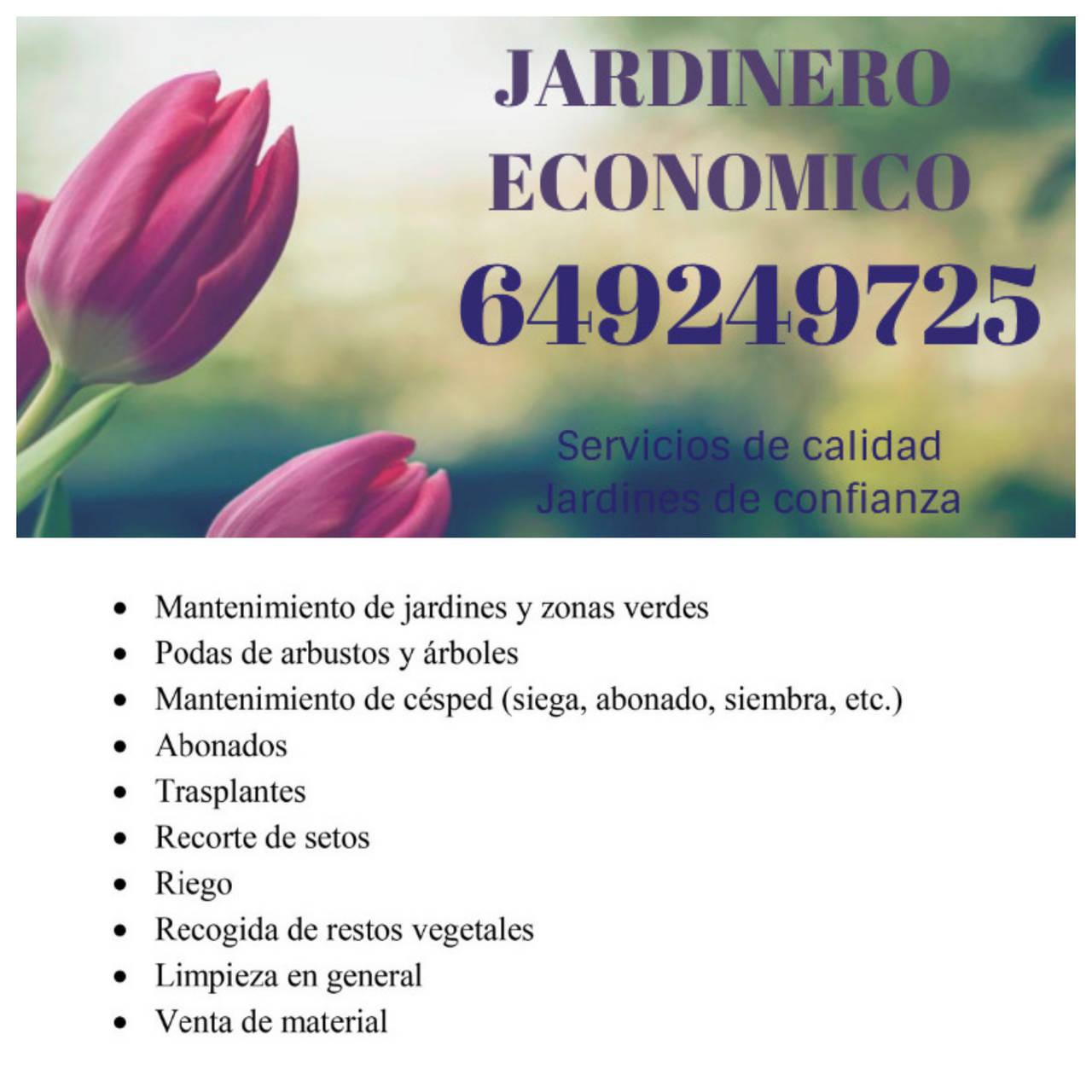 JARDINERO ECONOMICO Y PROFESIONAL  - Foto 1