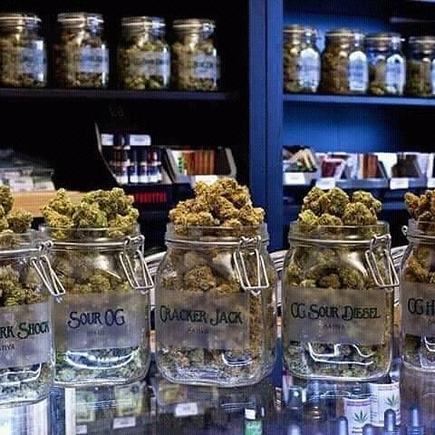 marihuana medicinal en venta de alto grado si está interesado, hága...  - Foto 1