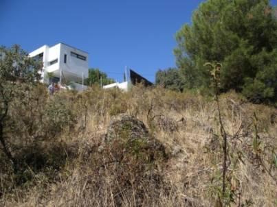 1200mt2 Urbana En Valdemorillo-MADRID-  - Foto 1