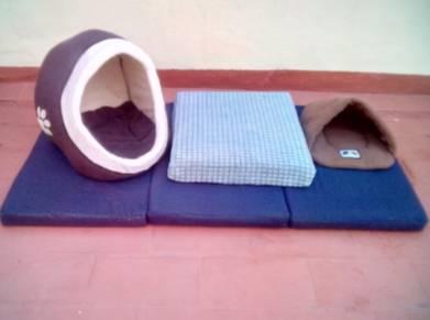 4 camas de perro y accesorios