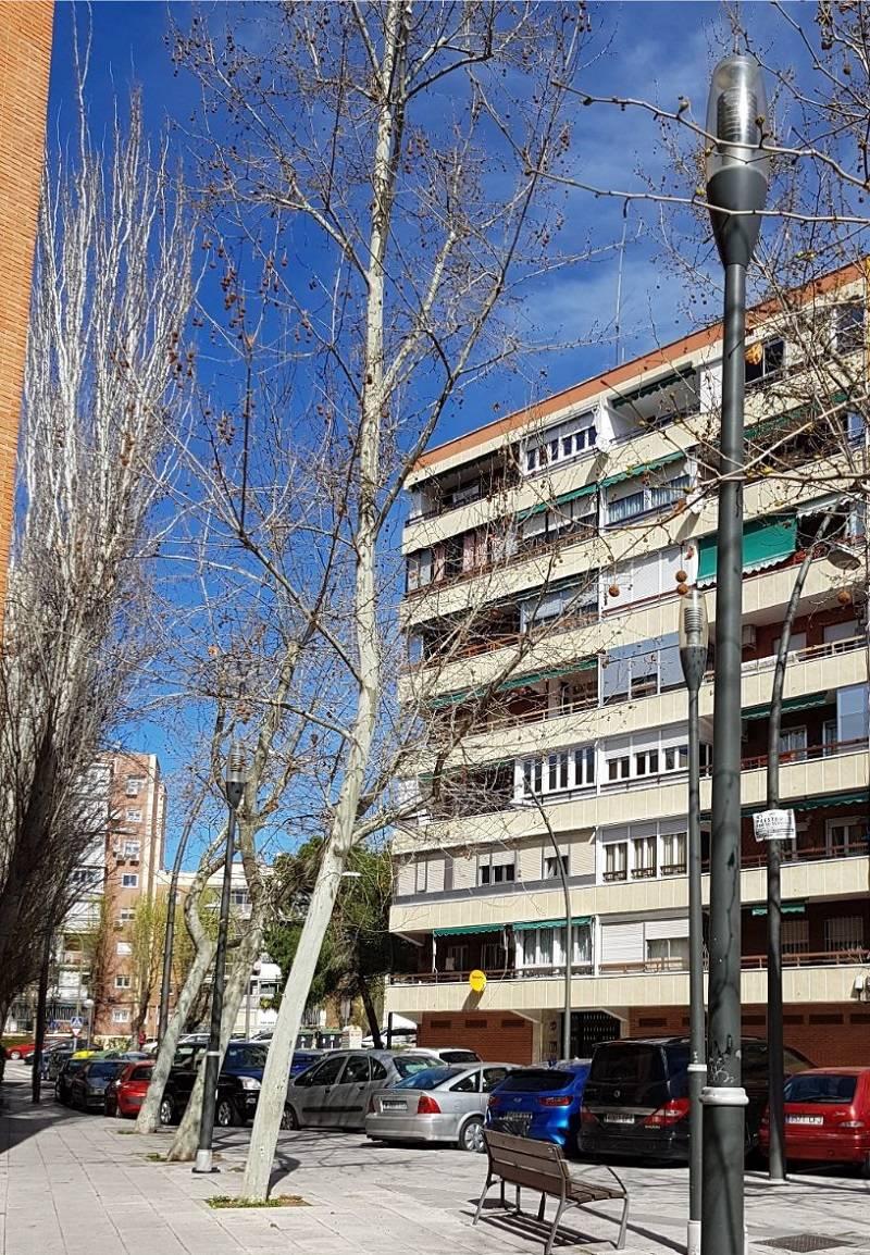 Particular: Vendo Piso con ascensor y trastero en Móstoles, Madrid  - Foto 1