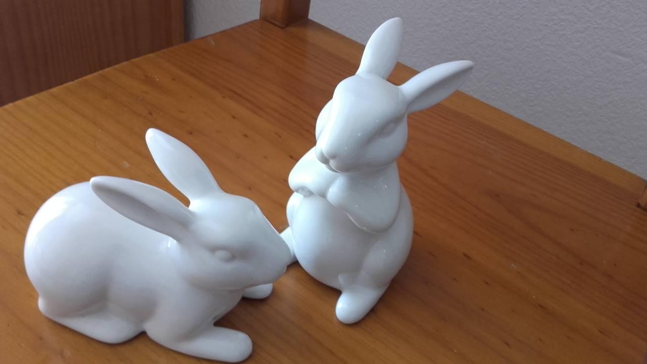 pareja de conejos  - Foto 3