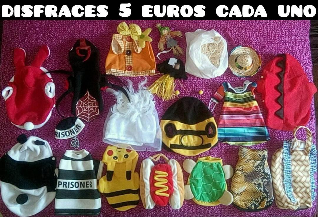 ropa y disfraces para mascota desde 2 a 15 euros  - Foto 3