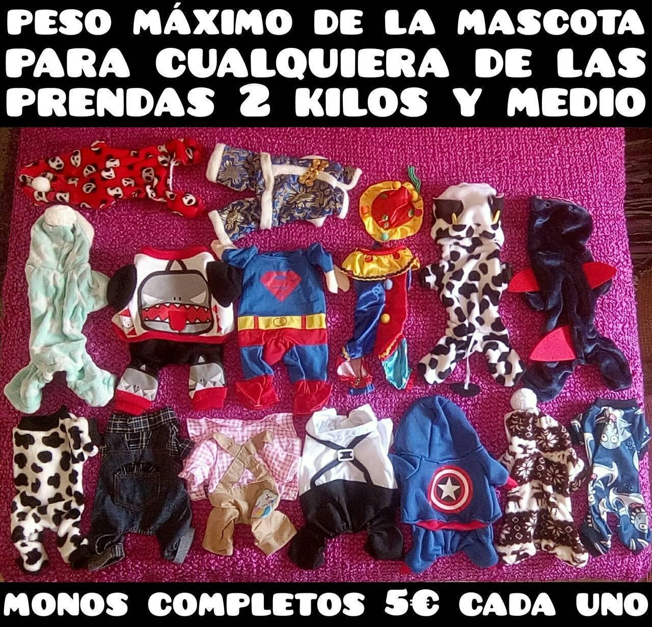 ropa y disfraces para mascota desde 2 a 15 euros  - Foto 6