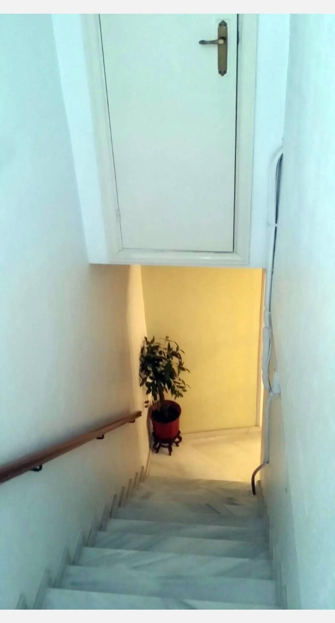 Casa con local (comercial, garaje o almacén) y azotea  - Foto 12