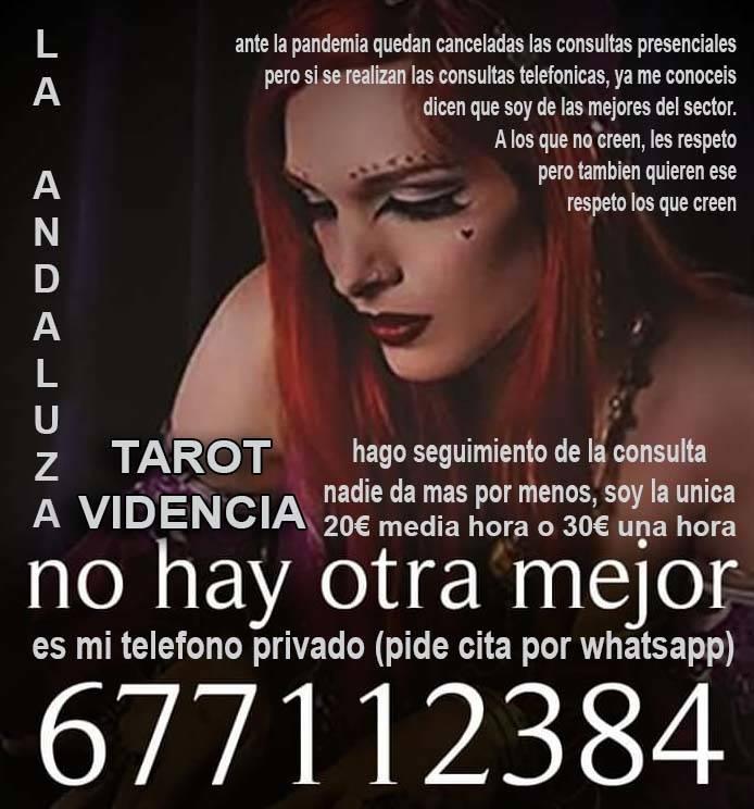 VIDENCIA Y TAROT  - Foto 1