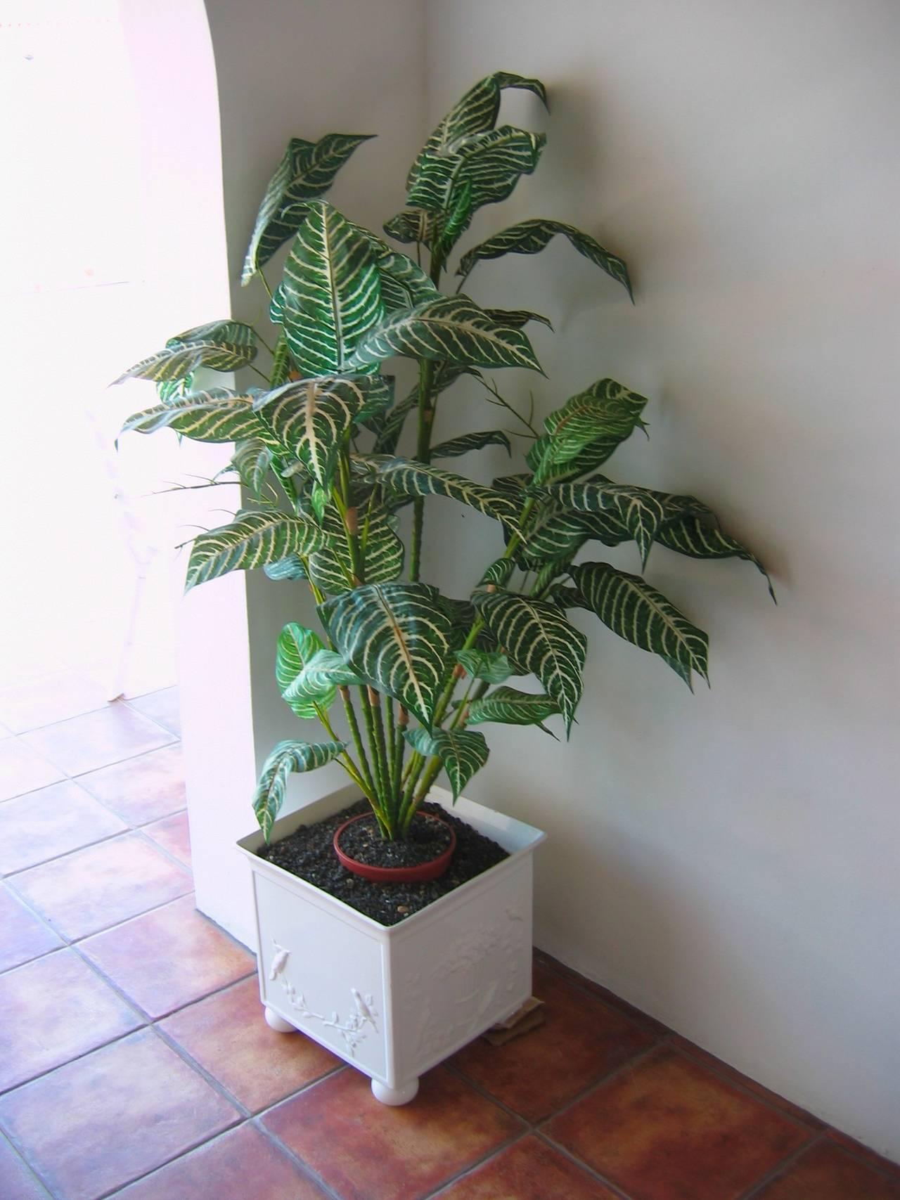 envase ceramica para planta  - Foto 1