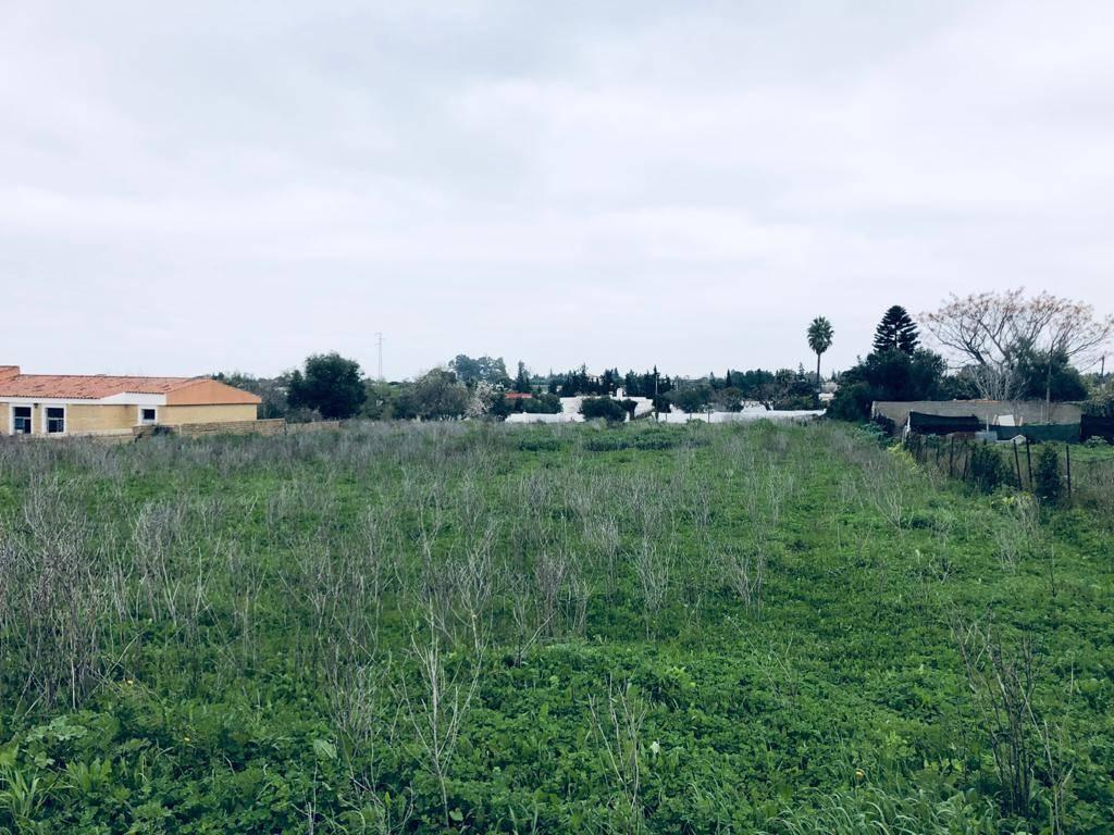 Parcela en Chiclana  - Foto 4