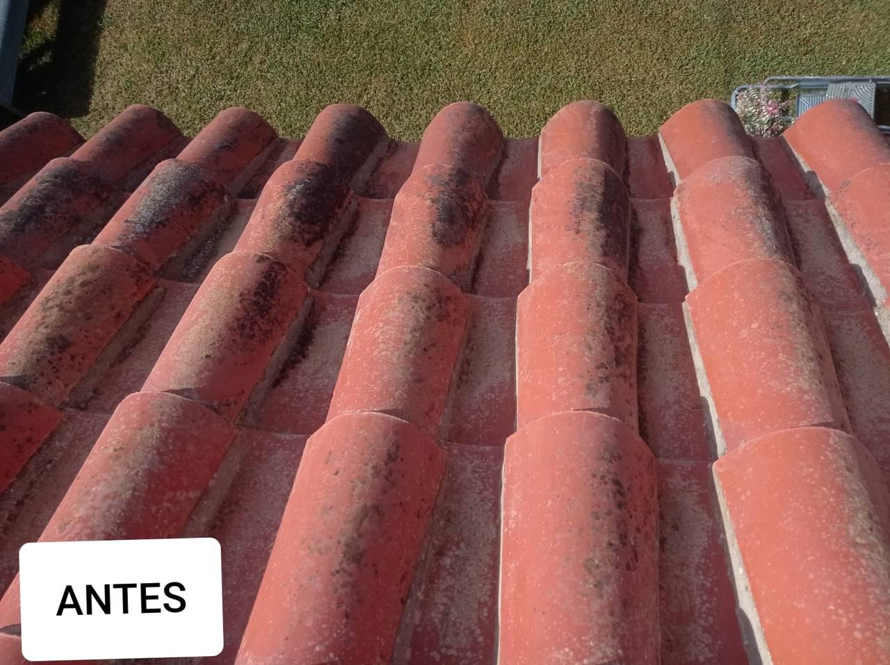 Limpieza de tejados y fachadas  - Foto 1