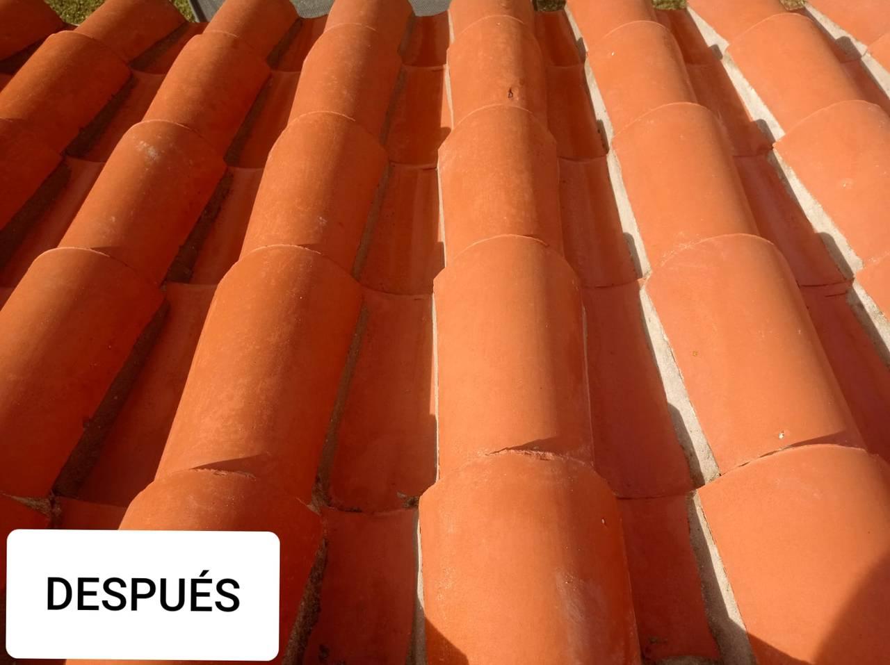 Limpieza de tejados y fachadas  - Foto 2